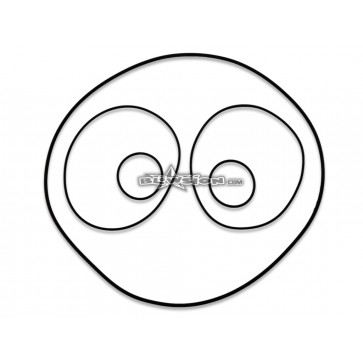DASA Cylinder Head O-Ring Kit