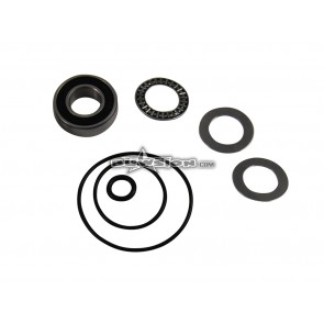Blowsion Steering System Rebuild Kit